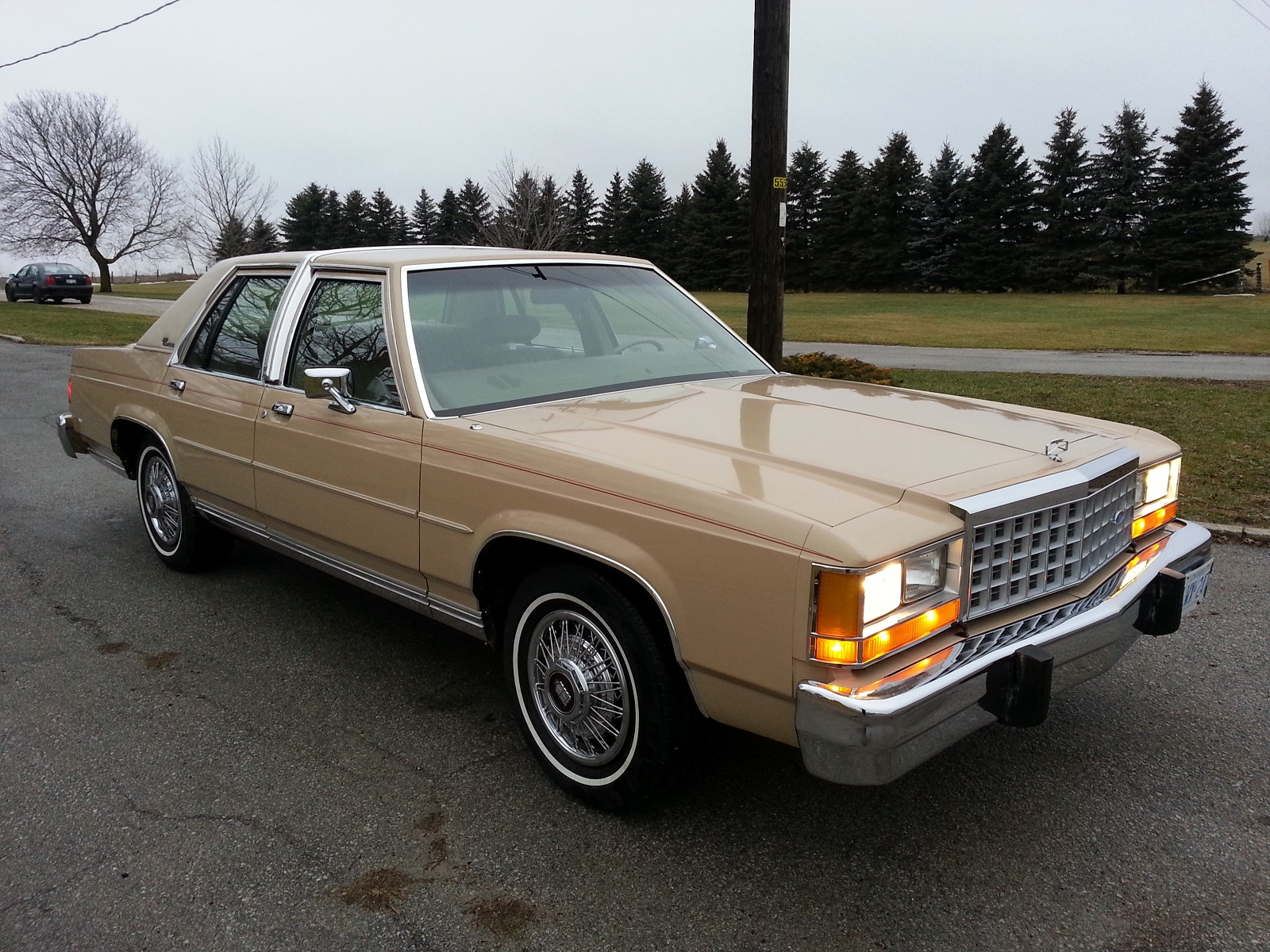 '87 LTD Crown Vic LX-20130113_164818small.jpg