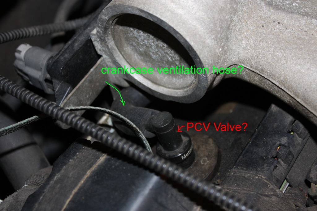 location of pcv valve on 2000 taurus taurus car club of america rh taurusclub com Ford 5.4 PCV Valve Location 2004 ford taurus pcv valve diagram