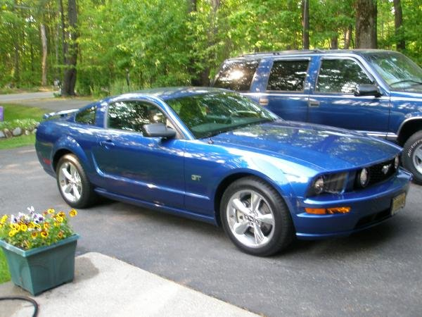 Showcase cover image for Mustang GT